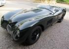 jaguar15
